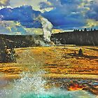 Yellowstone Geyser by Luann wilslef