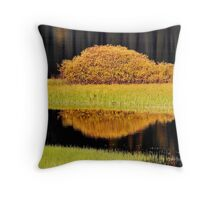 Water reflections in autumn Throw Pillow