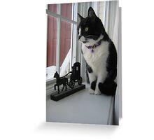 Window Watcher Greeting Card