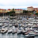WELCOME TO AJACCIO, CORSICA by Thomas Barker