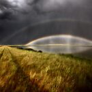 Storm clouds and rainbow over Chaplin Lake Marshes by pictureguy