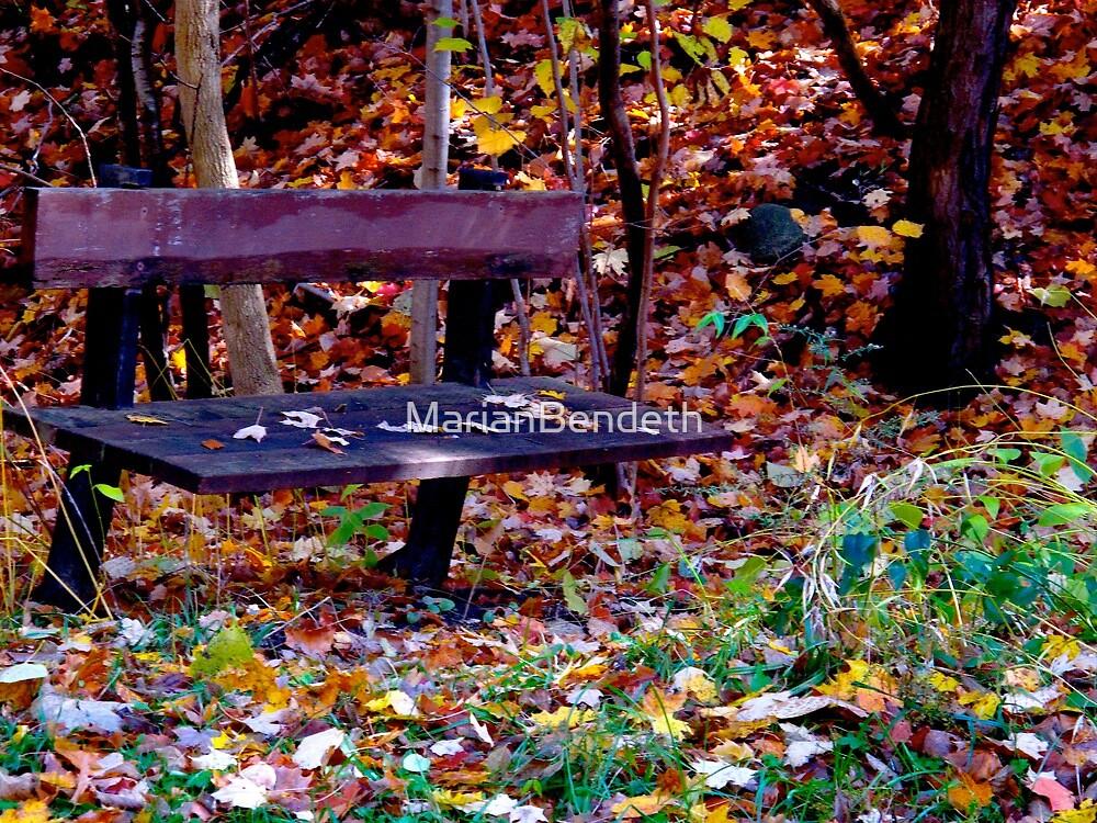 Autumn bench by MarianBendeth