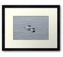 Synchronized Penguins Framed Print
