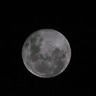 The Moon In All Its Fullness by Stuart Daddow Photography
