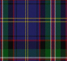 01451 Czech National District Tartan Fabric Print Iphone Case by Detnecs2013