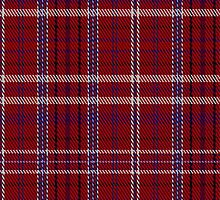 01454 Takla Makan Red Tartan Fabric Print Iphone Case by Detnecs2013