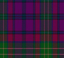 01460 Tartan Spirit Fabric Print Iphone Case by Detnecs2013