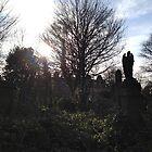 Dalry Graveyard by Talia Felix