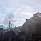 Colors of Castle Hill by Talia Felix