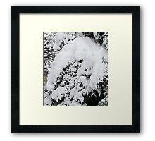 Snow Wreath Framed Print