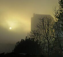 Sun and Fog by David Denny