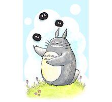 Juggling Totoro Photographic Print
