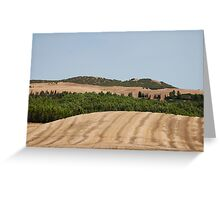 Brown Field and Trees Greeting Card