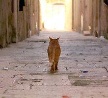 Malta 4 by Igor Shrayer