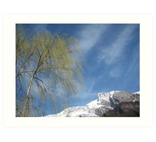 Bare Tree and Snowy Mountain Art Print