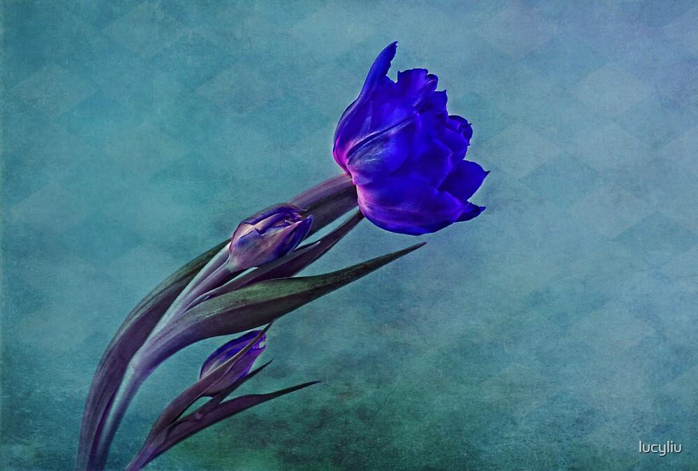 blue  by lucyliu