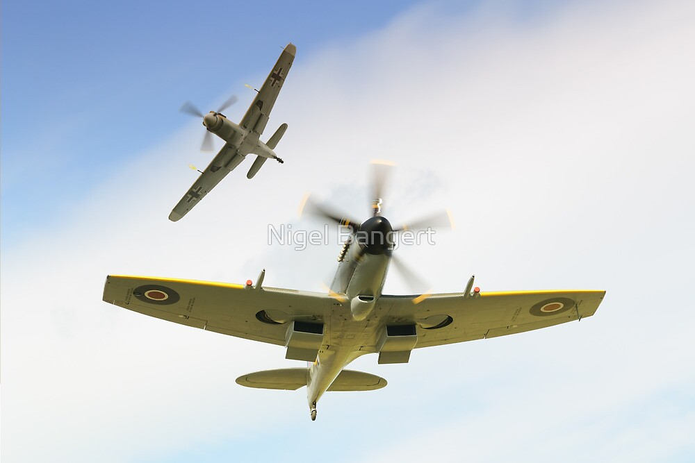 Dogfight  by Nigel Bangert