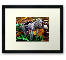 It Was A Good Life Framed Print