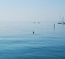 Lake Garda, Italy by jojobob