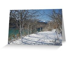 Lakeside Trees in Snow Greeting Card