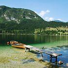 Boat at Lake Bohinj Shore by jojobob