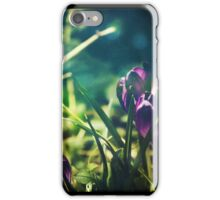 Spring Magic (Diptych) iPhone Case/Skin