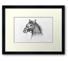 Pencil Drawing of a horse Framed Print