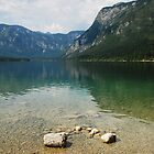 Lake Bohinj Shore by jojobob