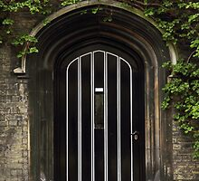 Typical Old English Entrance door with ivy by kirilart
