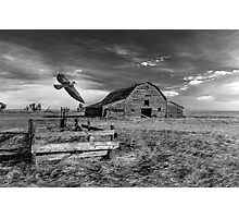 Hawk House - BW Photographic Print
