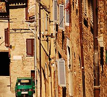 Ape in Urbino Street by jojobob