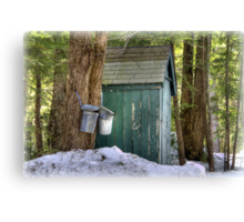 Two Taps and an Outhouse Canvas Print