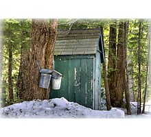 Two Taps and an Outhouse Photographic Print