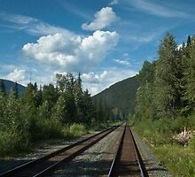 View From a Train by Georden