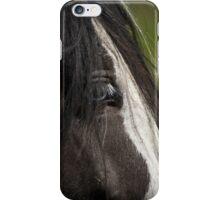 Horse 01 iPhone Case/Skin