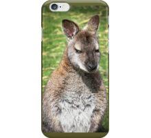 Roo iPhone Case/Skin