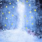 Bright Starry Night by Anne  McGinn