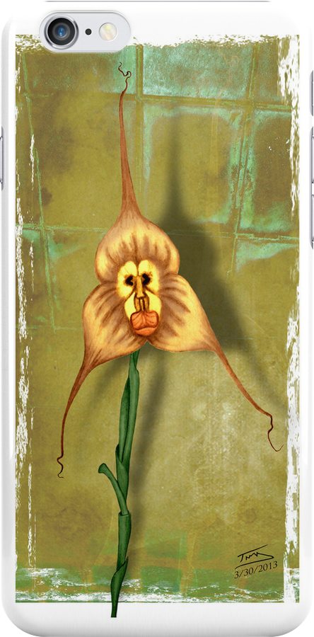 Monkey Face Orchid by Troy Brown
