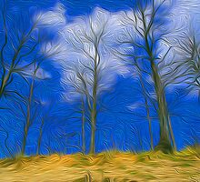 beech trees in the sky by balco
