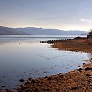 Loch Fyne by Christine Smith