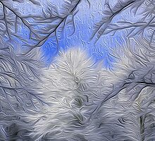 Snow in the woods by balco