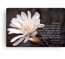 I know that my Redeemer liveth...   Canvas Print