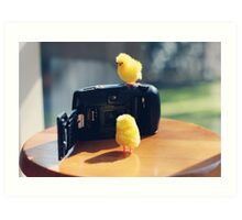 Toy Chickens - Camera Art Print