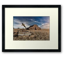 Hawk Home - Color Framed Print