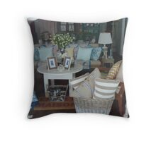 A country window display 2 Throw Pillow