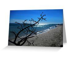 Shell tree Greeting Card