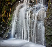 Strickland Falls, South Hobart, Tasmania #6 by Chris Cobern
