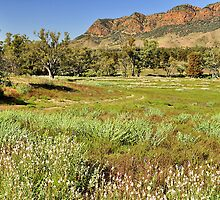 The Rugged Ranges by Terry Everson