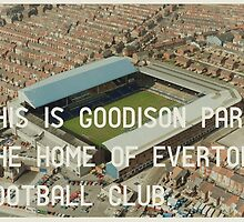 Everton Football Club by homework