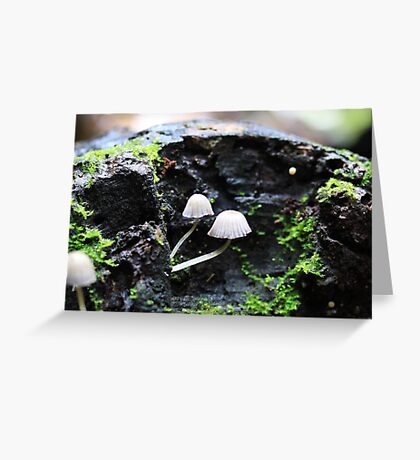 Mini world Greeting Card